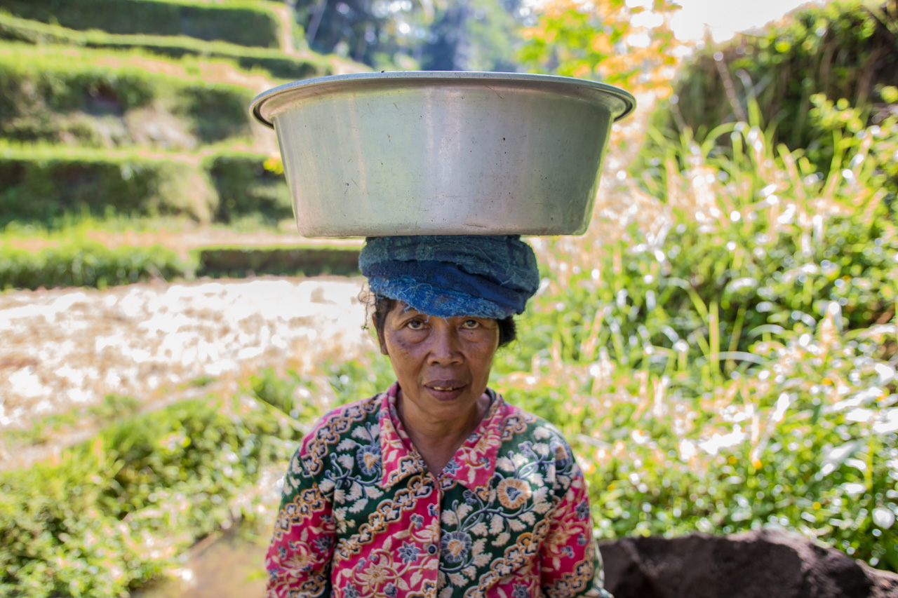 balinese woman, femme Bali, rice fields, rizières,