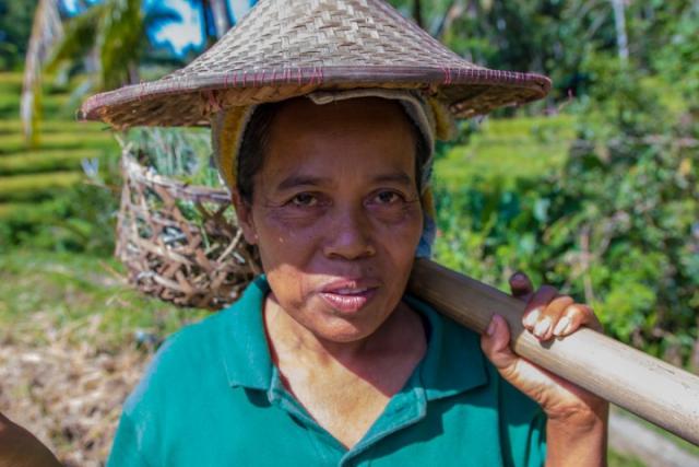 rizières, rice fields, Tegalalang, Ubud, balinese woman, femme de Bali