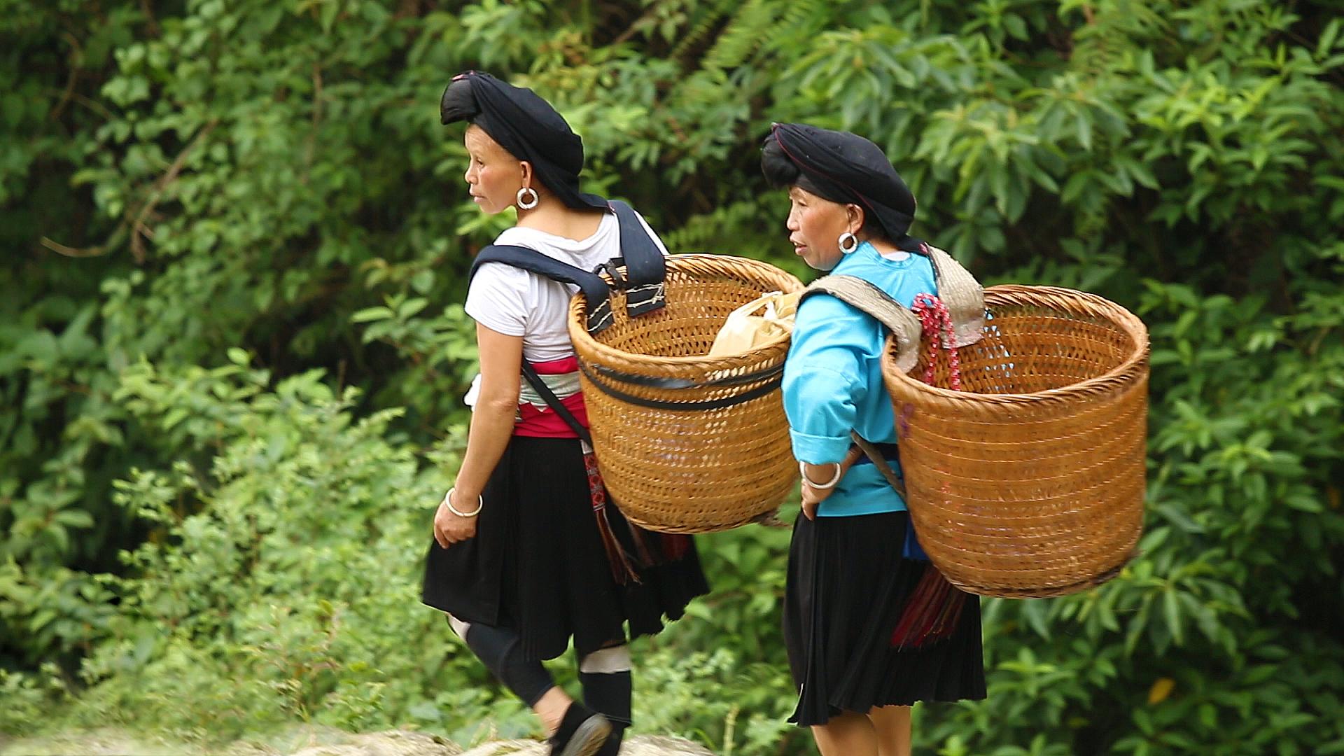 Guilin, Tiantouzhai, rizières de Longji, rizières en terrasses